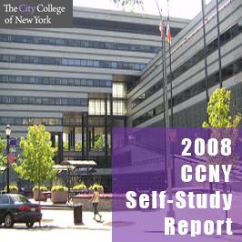 2008 Self-Study Report