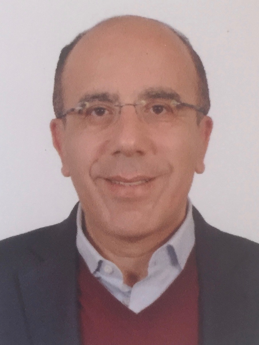 Photograph of Prof. Ibrahim Habib