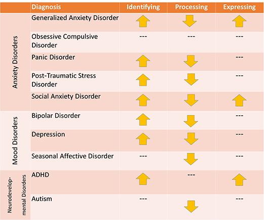 Novel MAS model linked emotion regulation
