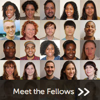 The Fellows have a wide variety of backgrounds and interests. But they share a passion for research.