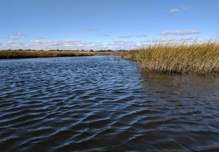 Maria Tzortziou Long Island Sound_Sea Grant_Research2